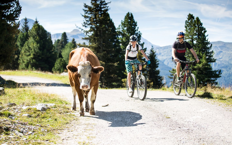 Panorama Biketour | © Zillertal Arena / Johannes Sautner