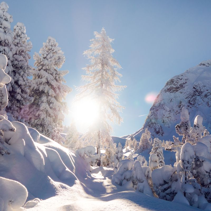 Winterlandschaft | ©zillertaltourismus / Tom Klocker